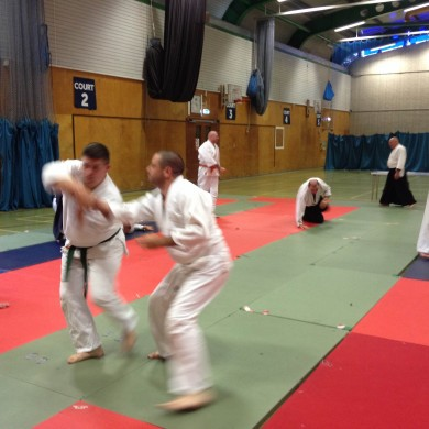 New Forest Aikido Seminar in Ringwood, Hampshire and Dorset